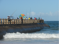 The exclusion of subsistence fishers from public spaces in Durban.png